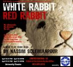 White Rabbit Red Rabbit