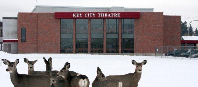 Even Deer Like Key City Theatre!