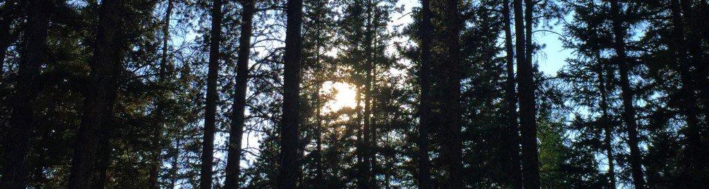 Banff 3