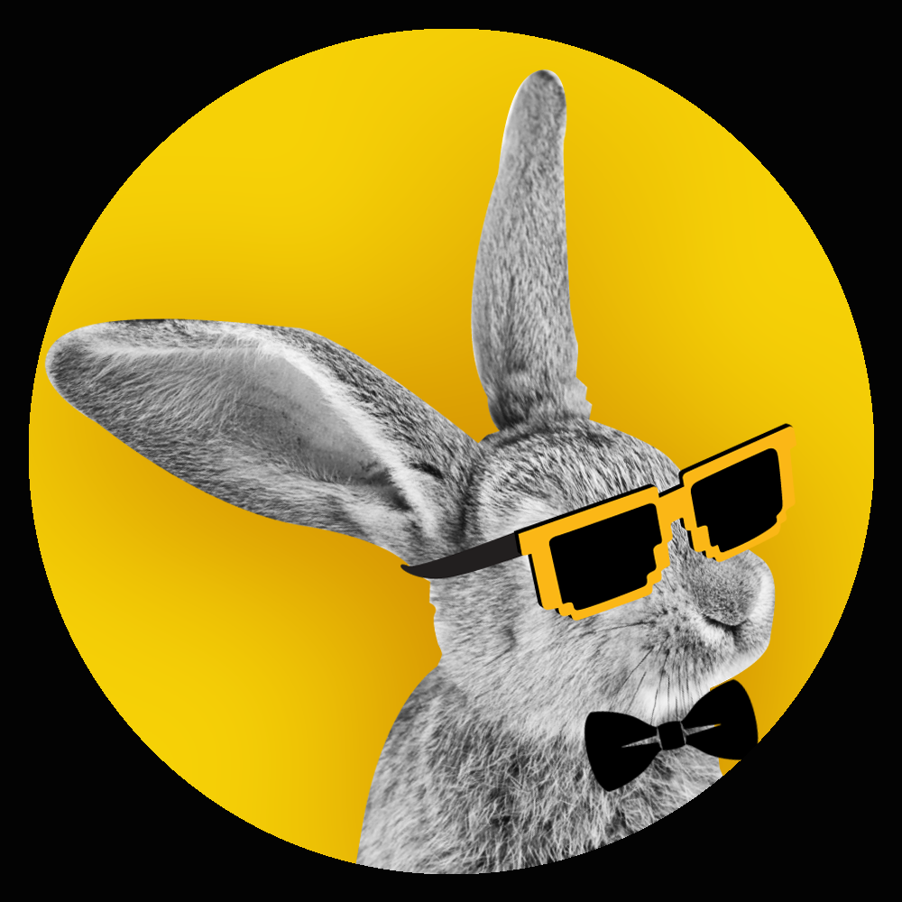 Bunny with sunglasses
