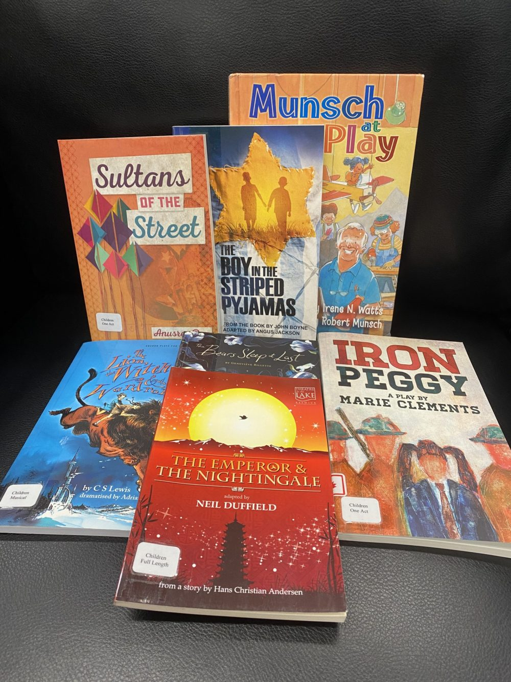 Photo of seven children's titles from library